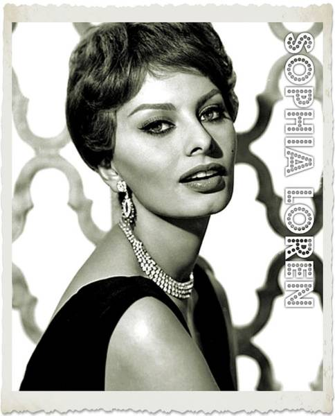 Sophia Photograph - Sophia Loren by John Springfield