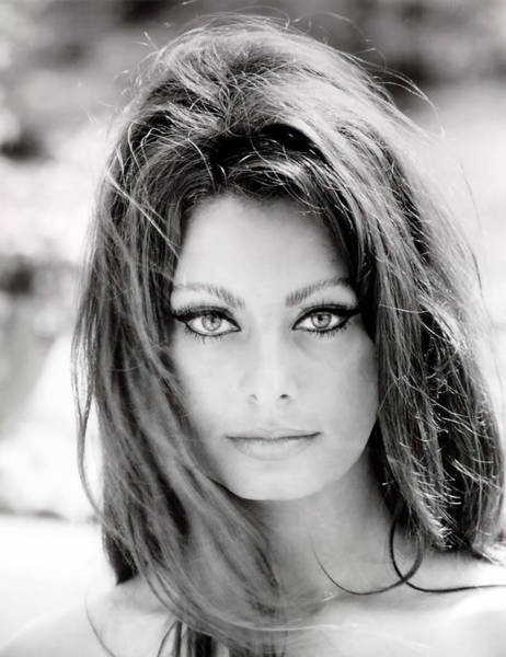 Black White And Red Wall Art - Photograph - Sophia Loren by Georgia Fowler