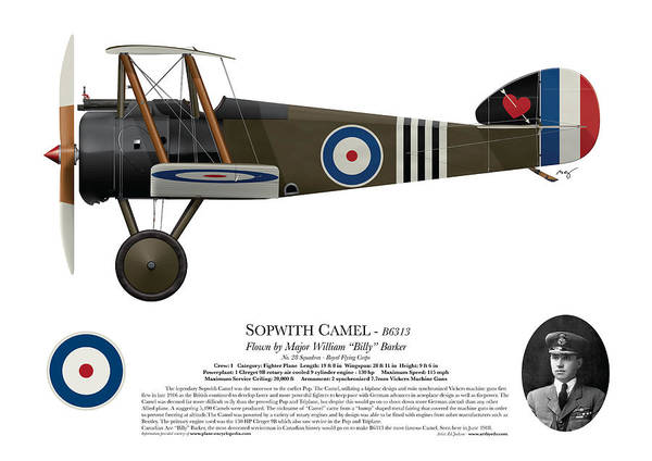 World War 1 Digital Art - Sopwith Camel - B6313 June 1918 - Side Profile View by Ed Jackson
