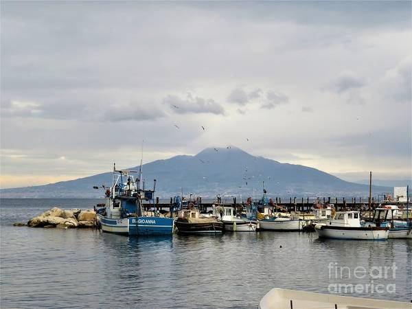 Photograph - Sorrento Harbor by Laurie Morgan