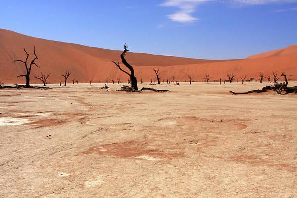 Photograph - Sossusvlei, Namib Desert, Namibia by Aidan Moran