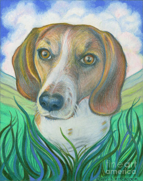 Ferrets Drawing - Soul Portrait Of Kallie by Debra A Hitchcock