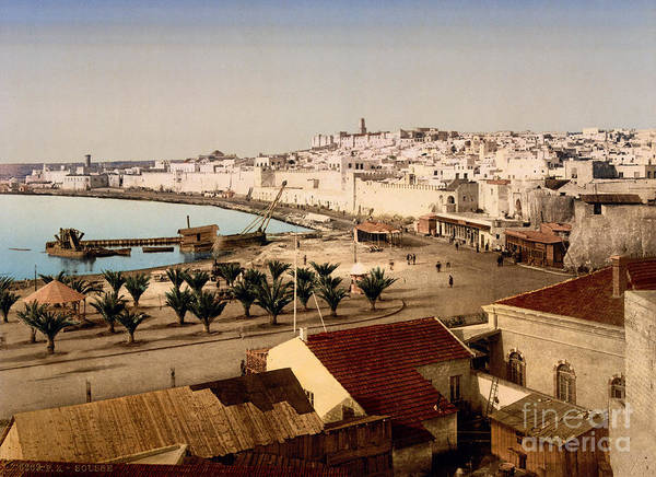 Painting - Sousse Tunisia by Celestial Images