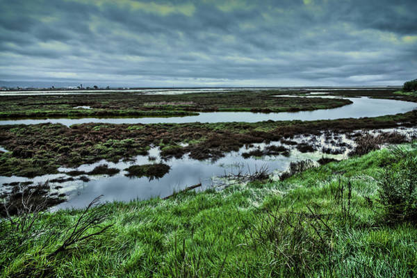 Alviso Photograph - South Bay Sanctuary by Joe Azevedo