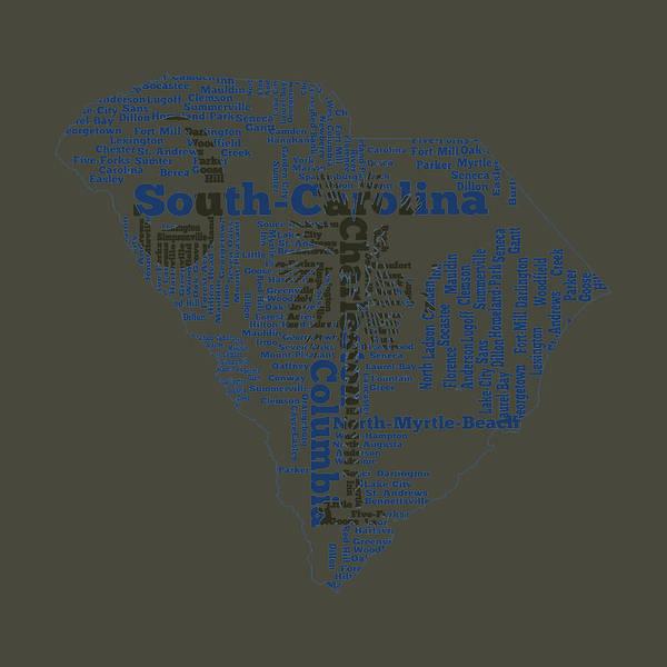 Us Civil War Mixed Media - South Carolina 11b by Brian Reaves