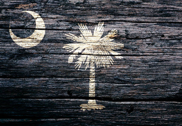 Wall Art - Mixed Media - South Carolina 1c by Brian Reaves