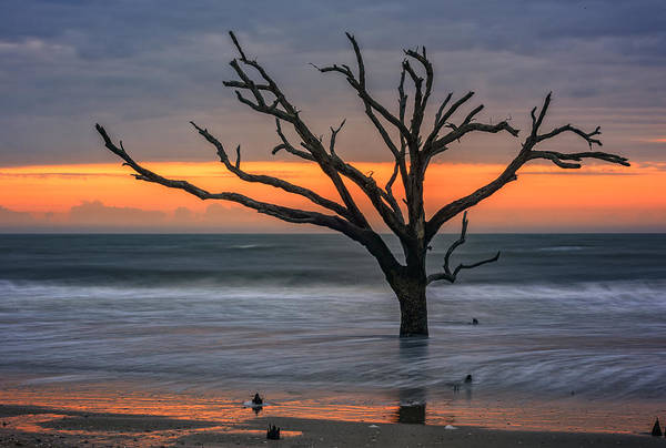 Photograph - South Carolina Sunrise by Rick Berk