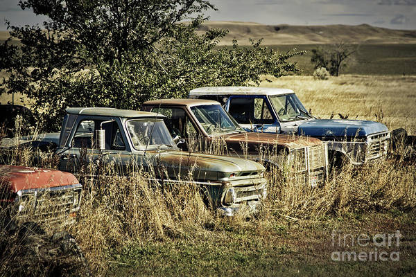 Photograph - South Dakota Oldies by Tatiana Travelways