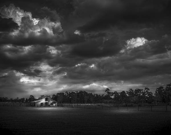 Horse Farm Photograph - South Forty Bw2 by Marvin Spates