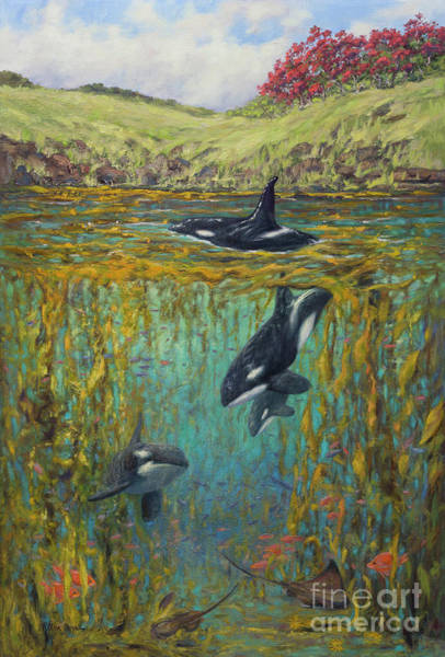 Save The Whales Wall Art - Painting - South Island Orca by Kristen Olson Stone