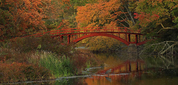 Photograph - South Natick Sargent Footbridge by Juergen Roth