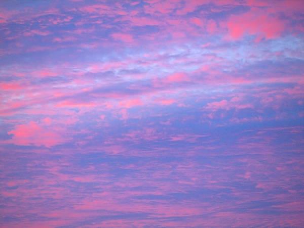 Photograph - South Of Sunrise by  Newwwman
