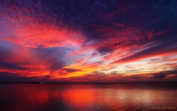 Photograph - South Padre Sunset #1 by Susan Vineyard