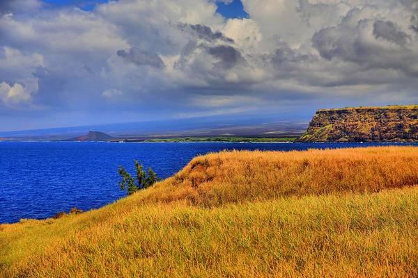 Hawaiiana Photograph - South Point by DJ Florek