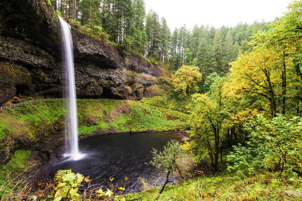 Photograph - South Silver Falls 2 by Jedediah Hohf