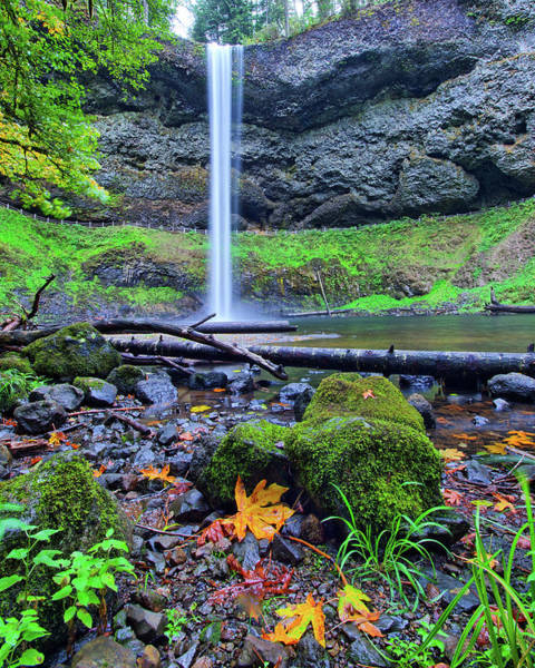 Photograph - South Silver Falls 3 by Jedediah Hohf