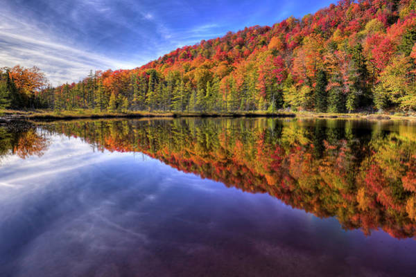 Photograph - Southwest End Of Bald Mountain Pond by David Patterson