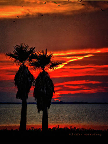 Photograph - Southeast Texas Sunset by Charles McKelroy
