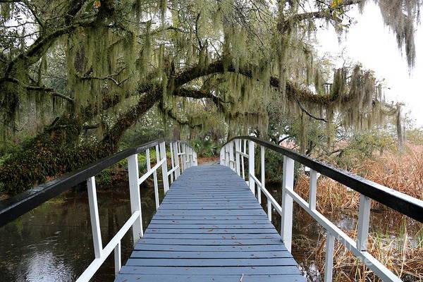 Photograph - Southern Bridge Perspective by Carol Groenen