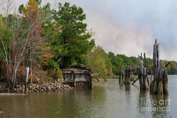 Photograph - Southern Georgetown Treasure by Dale Powell