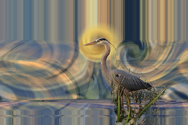 Digital Art - Southern Lights And A Great Blue Heron by rd Erickson