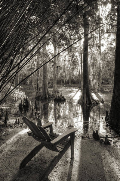Photograph - Southern Living by Dustin K Ryan