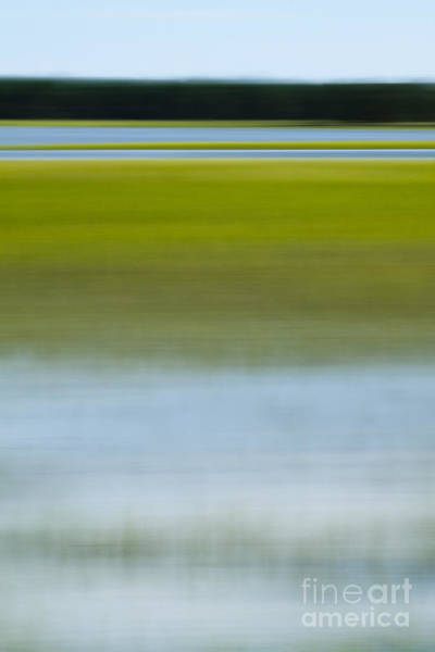 Marshes Photograph - Southern Marsh Motion by Dustin K Ryan