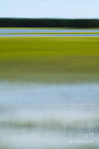 Photograph - Southern Marsh Motion by Dustin K Ryan
