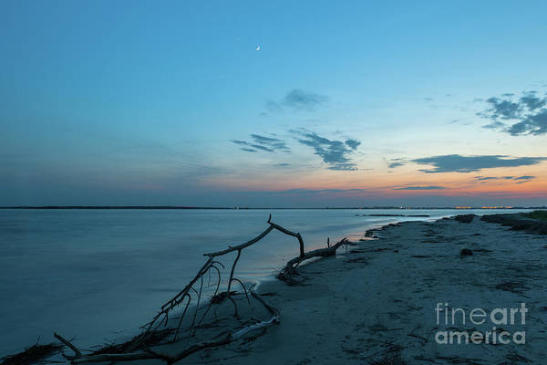 Photograph - Southern Moon Twilight by Dale Powell