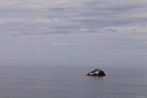 Photograph - Southern Oregon Coastal View by Alexander Fedin