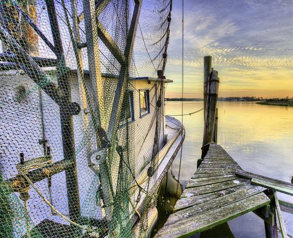 Photograph - Southern Shrimper by JC Findley