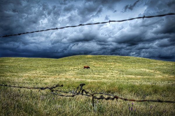 Barb Photograph - Southern Wyoming Solitude by Christopher Thomas