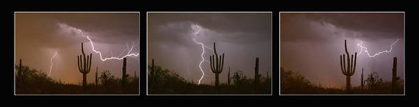 Photograph - Southwest Saguaro Cactus Desert Storm Panorama by James BO Insogna