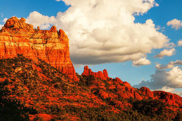 Photograph - Southwestern Beauty by Ola Allen