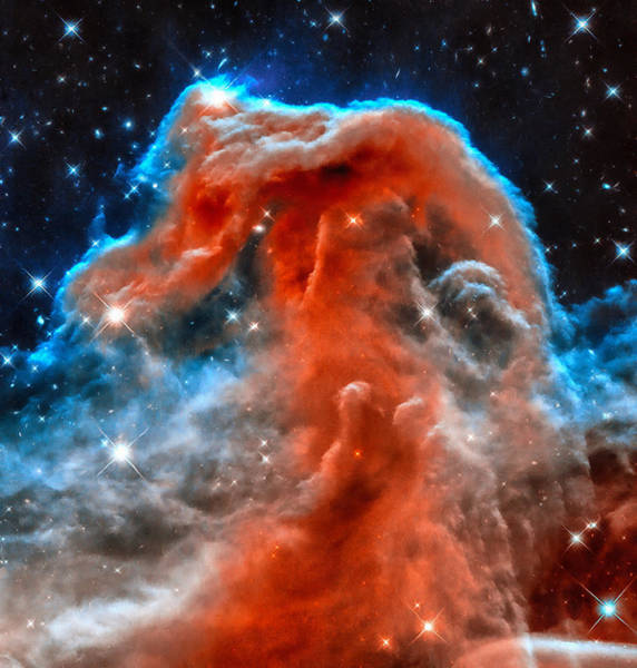 Photograph - Space Image Horsehead Nebula Orange Red Blue Black by Matthias Hauser