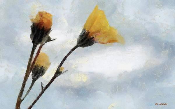 Painting - Spacious Skies by RC DeWinter
