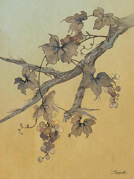 Digital Art - Spade's Grapevine by M Spadecaller