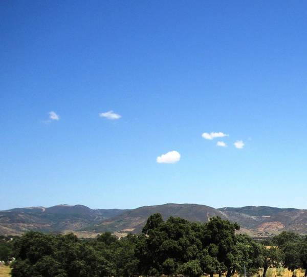 Photograph - Spain Scenery Country Side Towards Seville by John Shiron