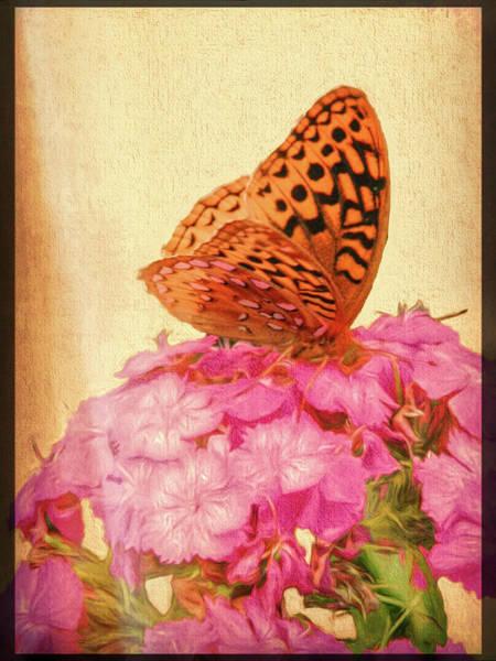 Digital Art - Spangled Fritillary Butterfly by Rusty R Smith