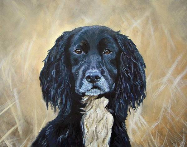 Field Spaniel Painting - Spaniel In The Rough by Heather Hindle
