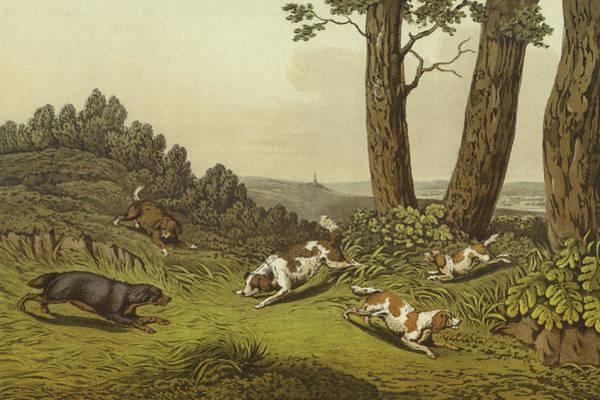 King Charles Spaniel Painting - Spaniels by Henry Thomas Alken