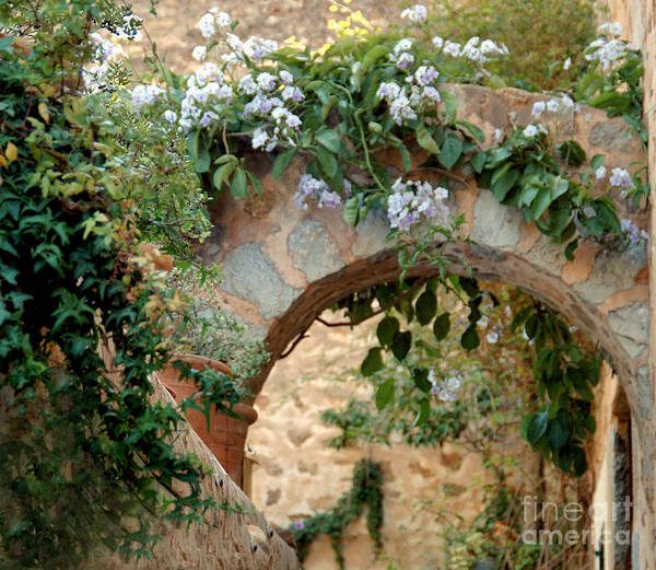 Photograph - Spanish Archway by Kathleen Gauthier