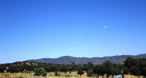 Photograph - Spanish Scenery On The Way To Seville by John Shiron