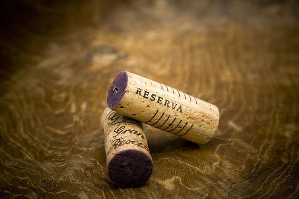 Franks Photograph - Spanish Wine Corks - Reserva And Gran Reserva by Frank Tschakert
