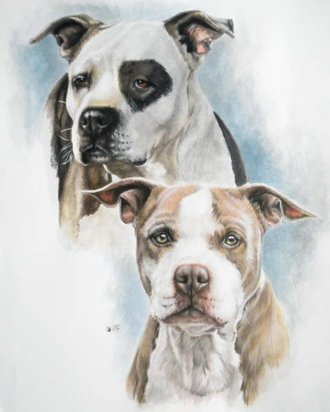 Painting - Sparkle And Buster by Barbara Keith