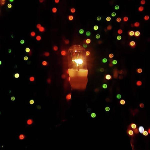 Photograph - Sparkle In A Bulb by Atullya N Srivastava