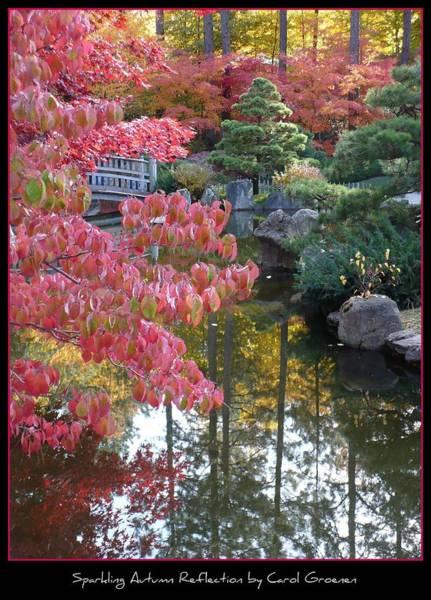 Photograph - Sparkling Autumn Reflection by Carol Groenen