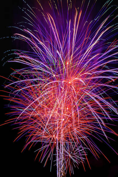 Dazzle Wall Art - Photograph - Sparkling Fireworks by Garry Gay