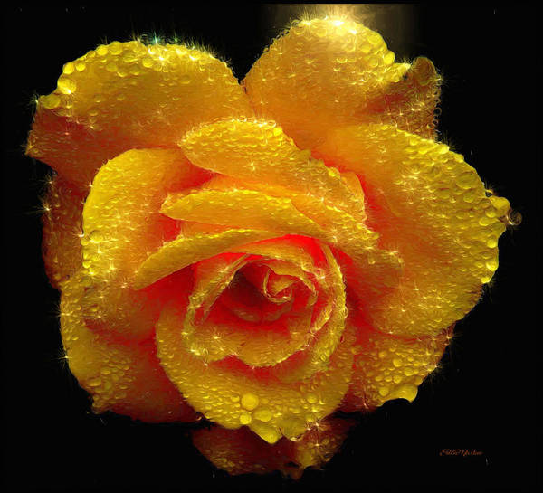 Digital Art - Sparkling Rose - Painted by Ericamaxine Price