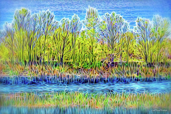 Digital Art - Sparkling Stream Afternoon by Joel Bruce Wallach